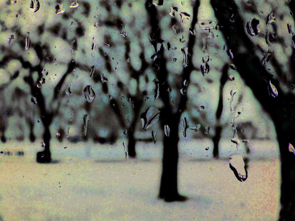 Abstract park in snow